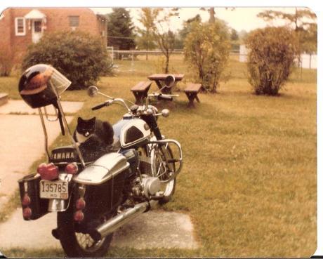 1968 yamaha